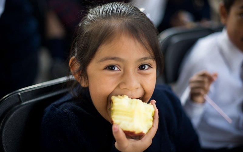 """<a href=""""/slideshow/alimentacion-y-nutricion-2"""">Alimentación y Nutrición 2</a>"""